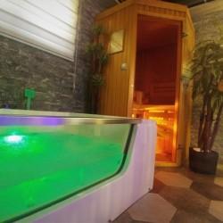 djakuzi apartmani sa saunom spa palma